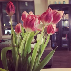 2017 resolution we actually kept: fresh flowers in the house each week